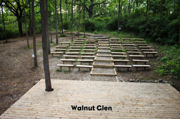 walnut glen image